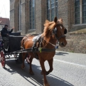One of many horse-drawn carts in Bruges