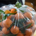 Impulse buy of the week - 64 satsumas! (We got through them all)