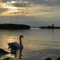 Our first sunset at Lake Balaton