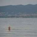 Kiri swimming in the lake