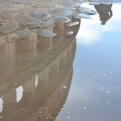 Touristy shot of the Colosseum reflected in a puddle