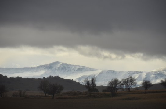 View from Bertha - stunning light and snowy mountains