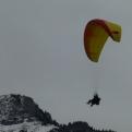 Paraglider landing (it's not us, sadly!)